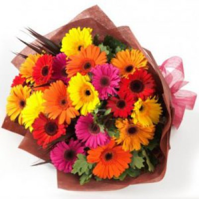 20 Colorful Gerberas Bunch