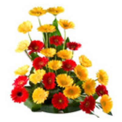 Gerberas Flowers Basket