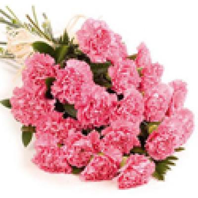 Pink Carnation Posy