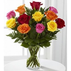 Colourful Roses in Vase