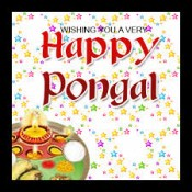 Pongal (15)