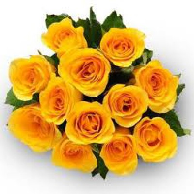 Fabulous Yellow Roses